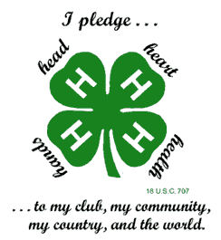 4-H Pledge and Clover